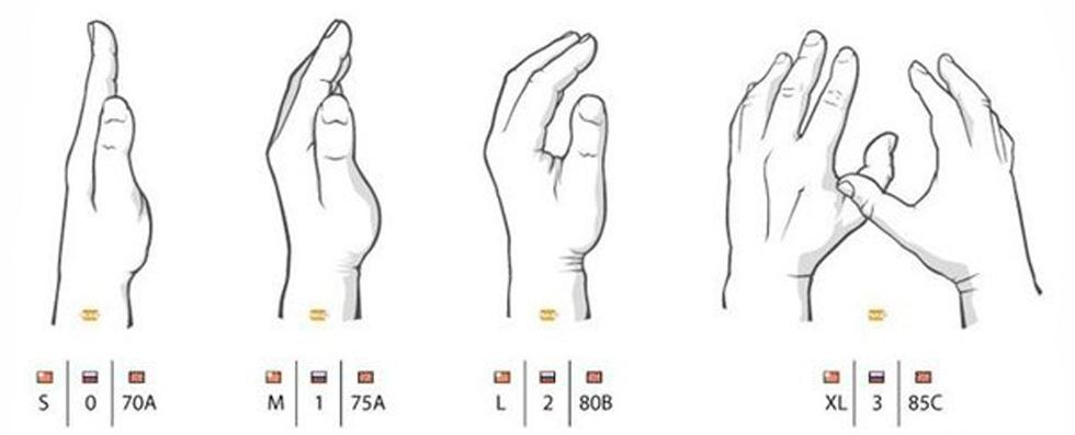 Как определить размер бюста