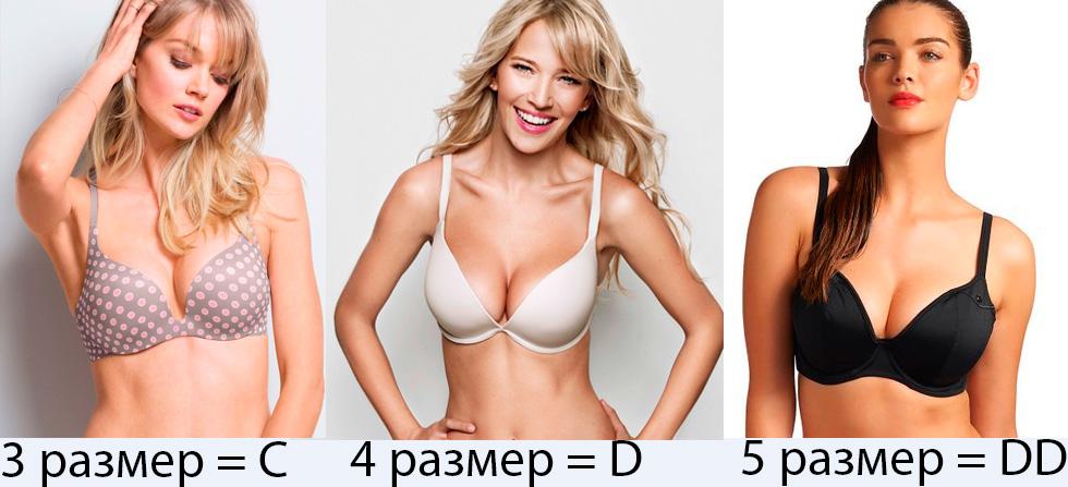 Разные размеры сисек фото